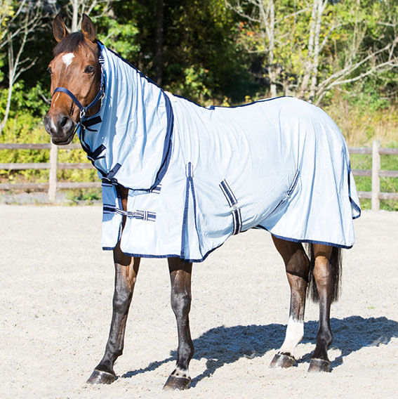 Horse Summer Protection Mesh Combo Neck Fly Blanket Mask Belly Cover Sheet Rugs