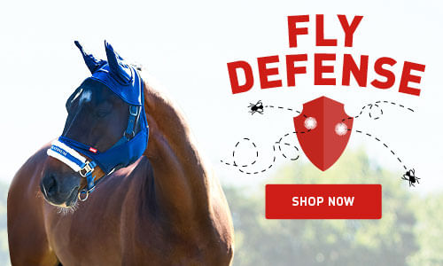 Protect your horse from the flies with our Fly sheets and fly masks